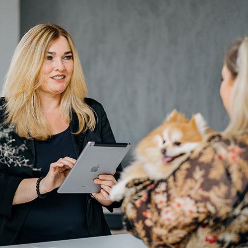 Biologische Therapie für Hunde Waldfischbach-Burgalben - Anja Wagner - Begrüßung in der Praxis