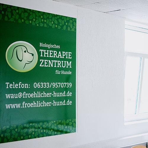 Biologische Therapie für Hunde Waldfischbach-Burgalben - Anja Wagner - Plakat